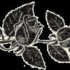 Památce_presidenta_Osvoboditele_-_1937_-_Ornament_1_page